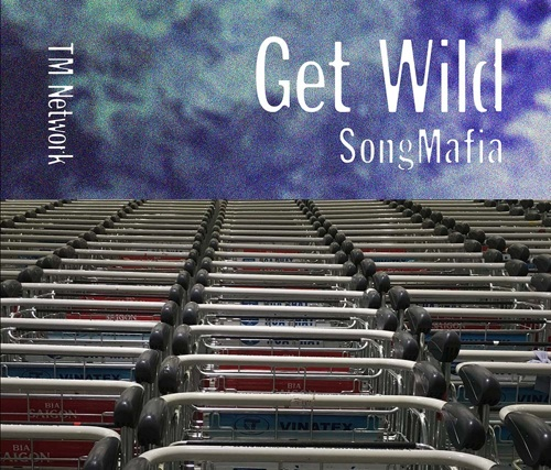 TM NETWORK / GET WILD SONG MAFIA