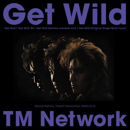 TM NETWORK 12インチ・アナログレコード『Get Wild』ジャケット