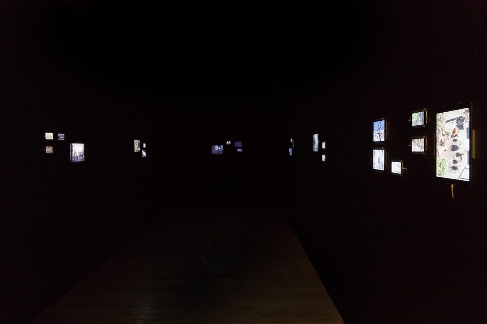 「坂本龍一 | 設置音楽展」スタート、8年ぶり新作の全貌が明らかに